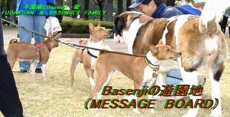 Basenji の遊園地